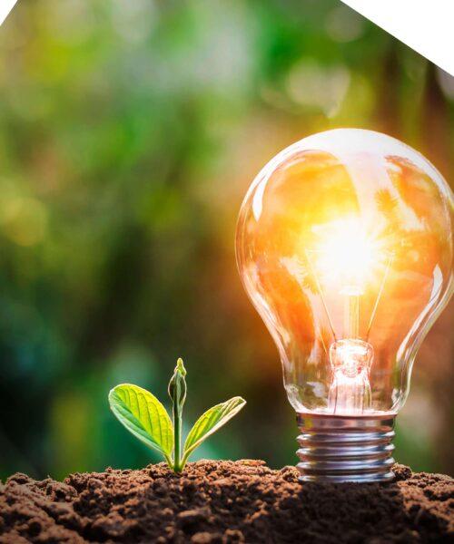 Economizar energia: dinheiro ou futuro?